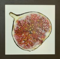 fig-40x40cm S
